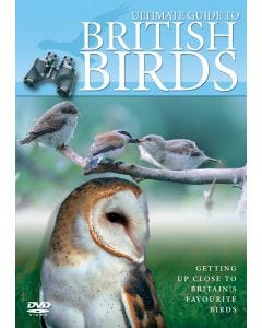 Ultimate Guide to British Birds DVD